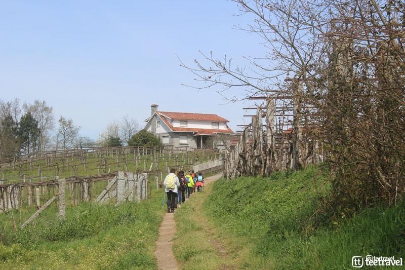 El Camino Portugués - Caldas de Reis