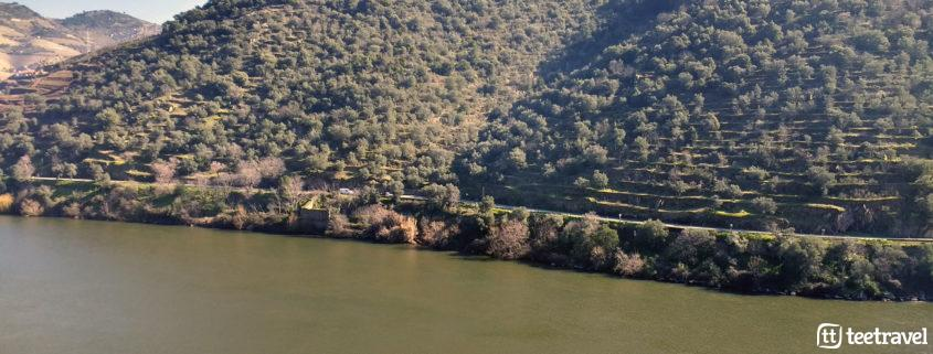 Río Douro y viñedos