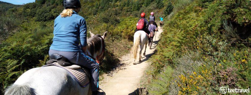 Peregrinos a caballo compartiendo espacio con peregrinos a pie con el casco recomendado