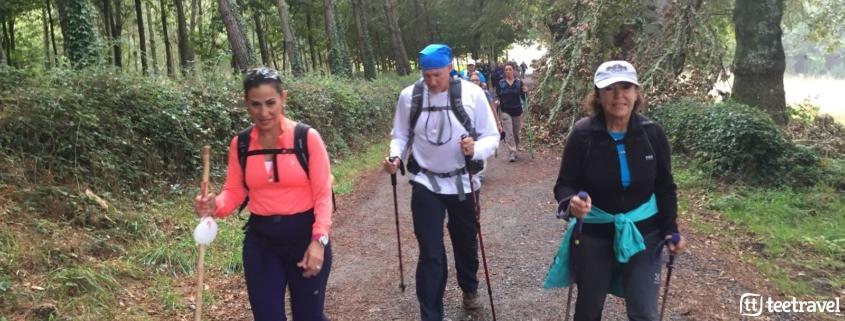 Camino de Santiago: Consejos- Usa stick o bastón