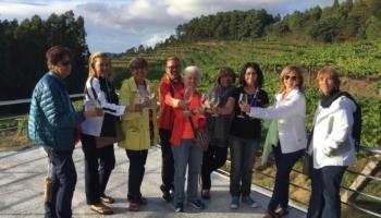 Gastronomía en el Camino Portugués