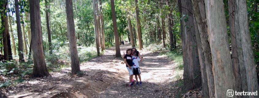 Camino de Santiago con niños - con los peques en el Camino
