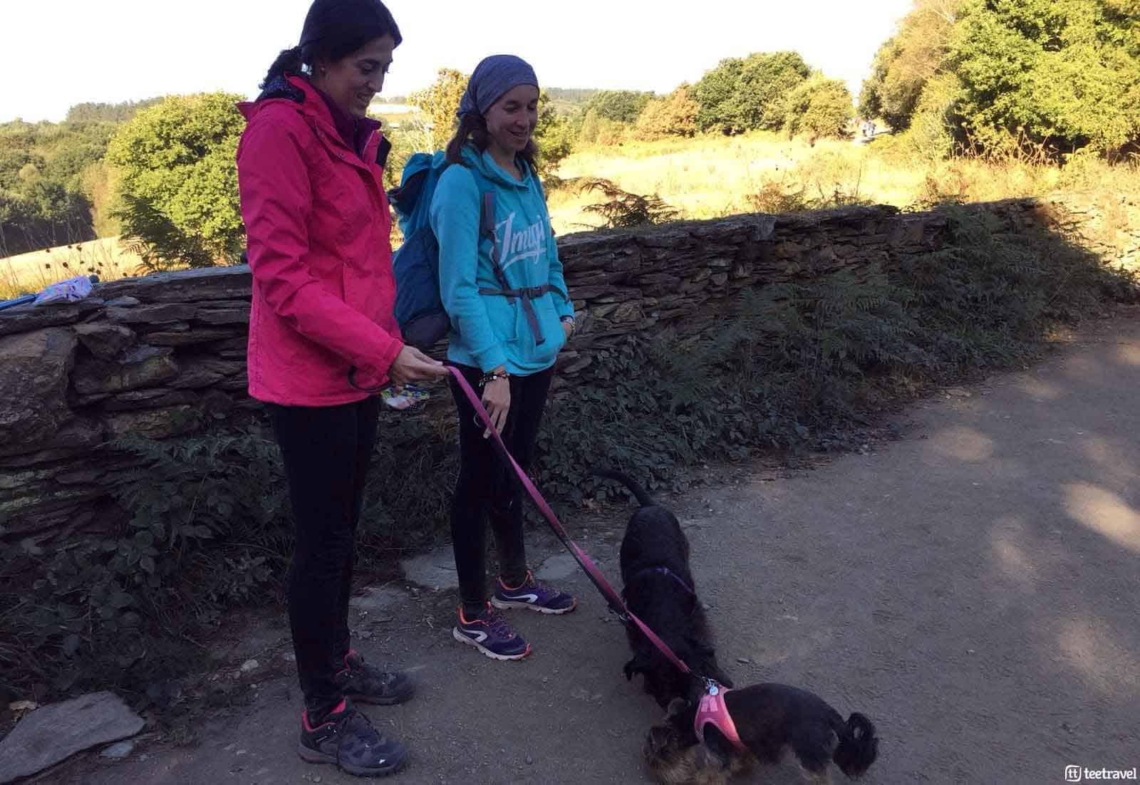 El Camino de Santiago con tu mascota - peregrinas con sus mascotas