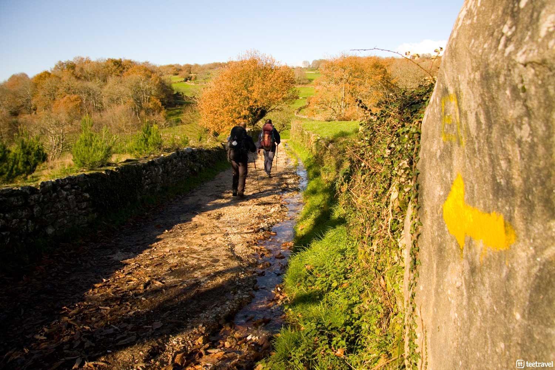 El Camino de Santiago de Compostela en otoño