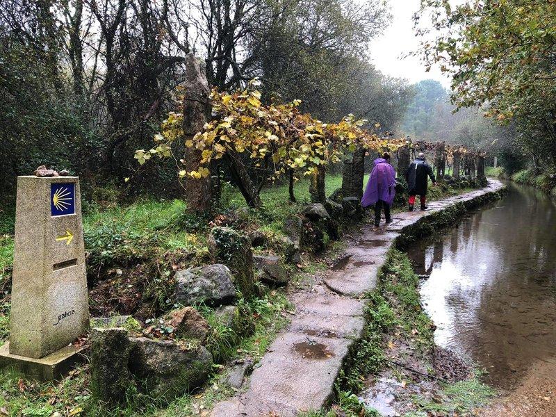 Camino de Santiago en una semana - Camino Portugués