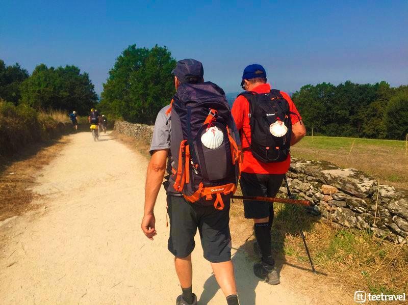 Peregrinos en el Camino Francés