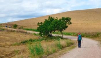 Hacer el Camino de Santiago Solo – Experiencia de un Peregrino