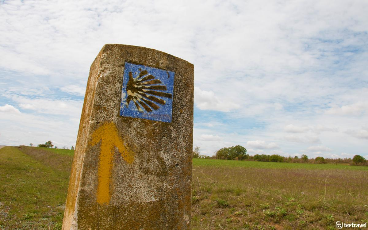 Camino Francés - León