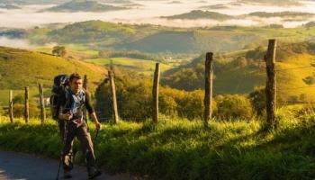 ¿Qué es el Camino de Santiago de Compostela?