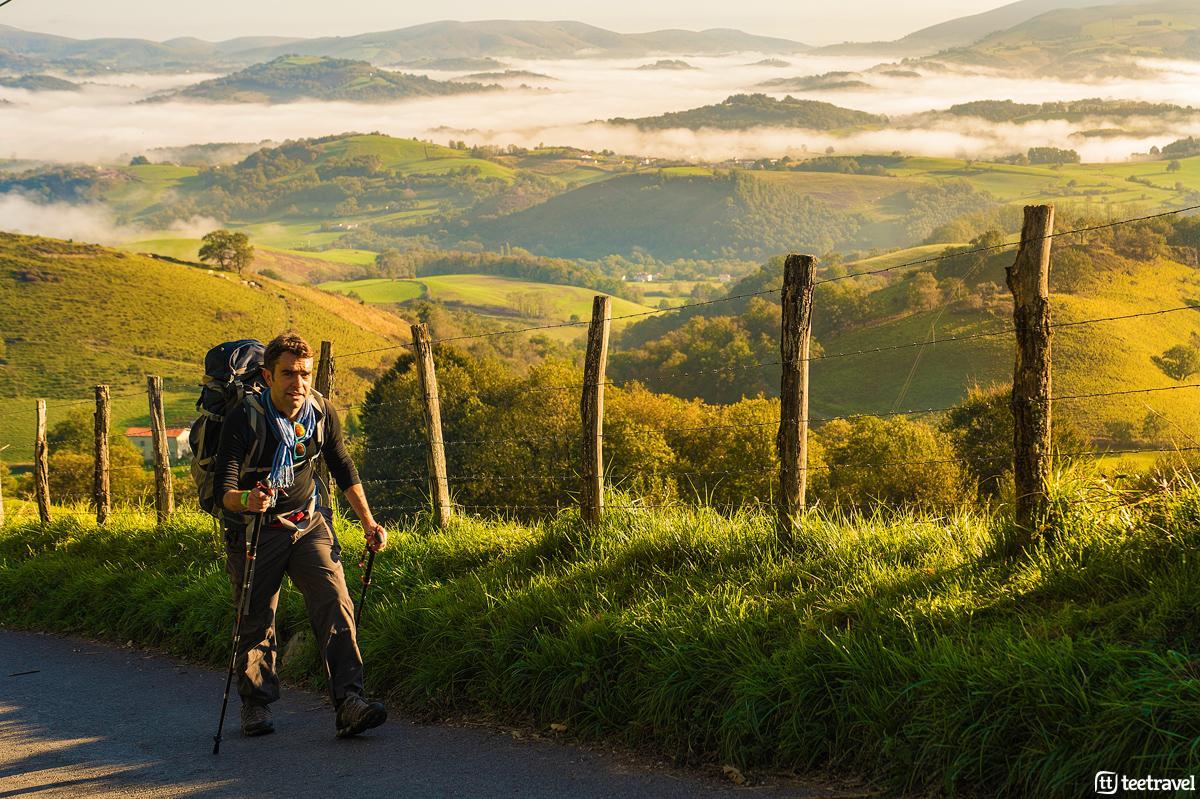 Camino de Santiago Francés