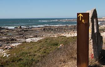 Camino Portugués por la Costa: Porto-A Guarda