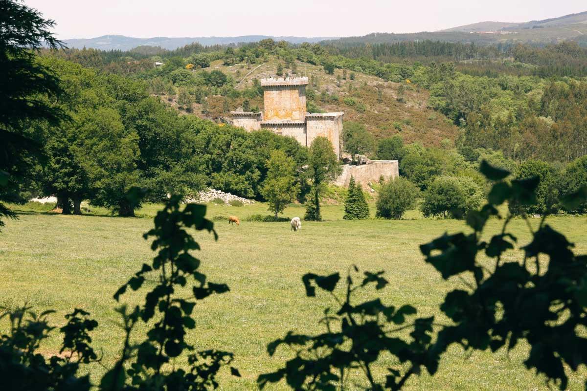Palas de Rei - Castillo de Pambre